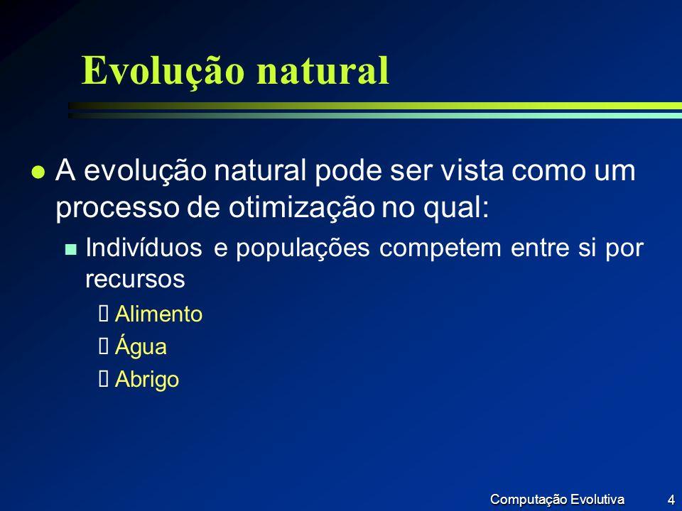 Evolução natural A evolução natural pode ser vista como um processo de otimização no qual: Indivíduos e populações competem entre si por recursos.