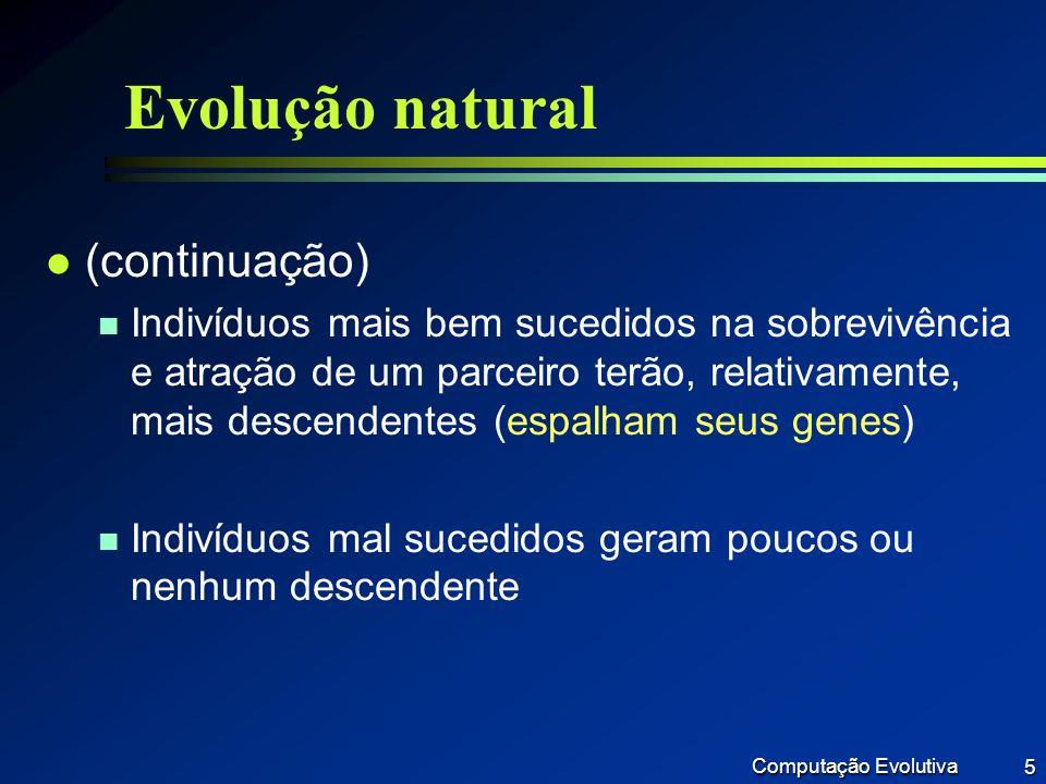 Evolução natural (continuação)