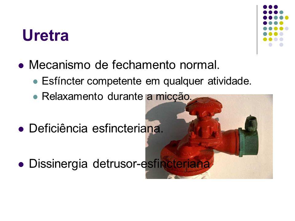 Uretra Mecanismo de fechamento normal. Deficiência esfincteriana.