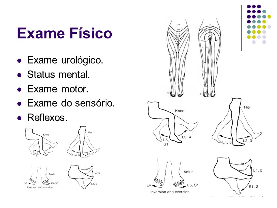 Exame Físico Exame urológico. Status mental. Exame motor.