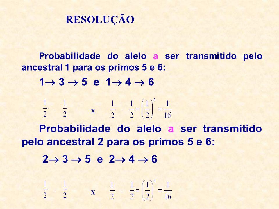 RESOLUÇÃOProbabilidade do alelo a ser transmitido pelo ancestral 1 para os primos 5 e 6: 1 3  5 e 1 4  6.