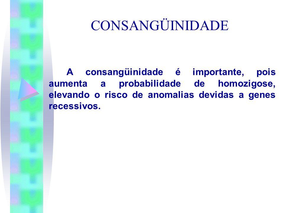 CONSANGÜINIDADEA consangüinidade é importante, pois aumenta a probabilidade de homozigose, elevando o risco de anomalias devidas a genes recessivos.