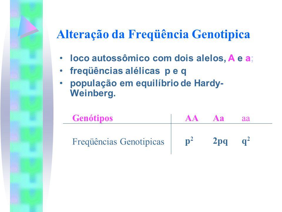 Alteração da Freqüência Genotipica