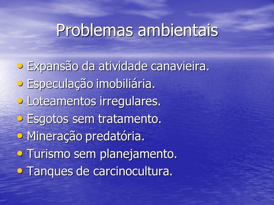 Problemas ambientais Expansão da atividade canavieira.