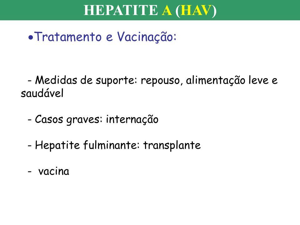 HEPATITE A (HAV) Tratamento e Vacinação: