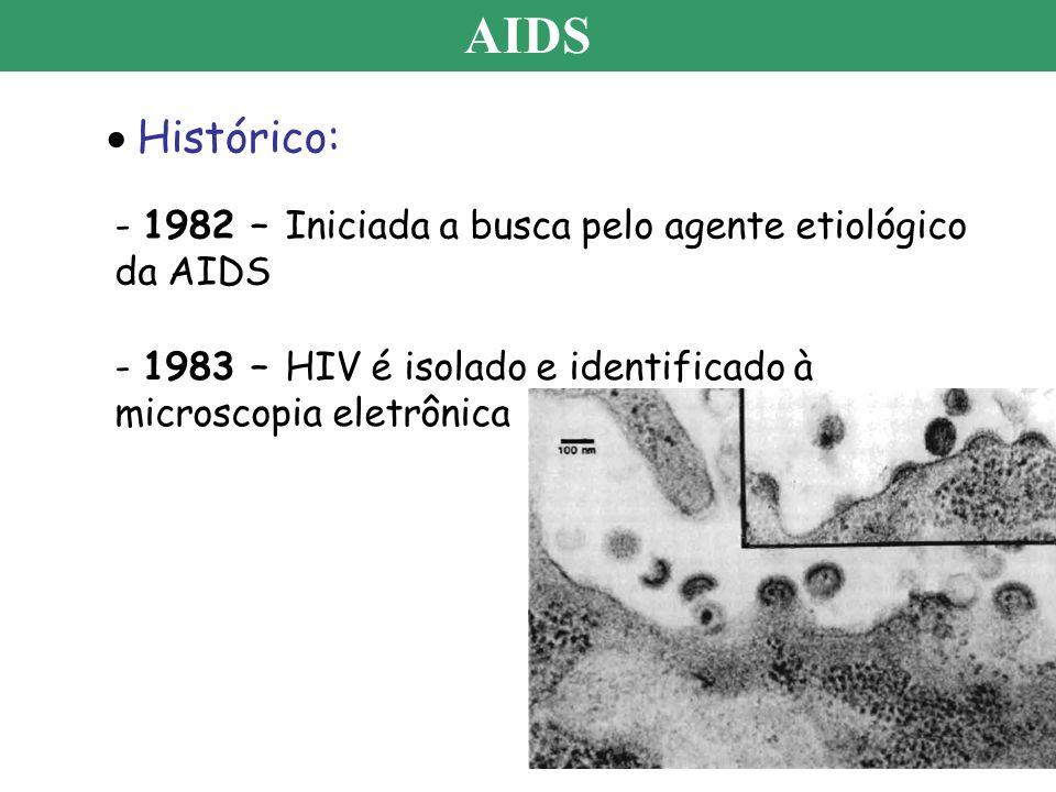AIDS Histórico: - 1982 – Iniciada a busca pelo agente etiológico da AIDS.