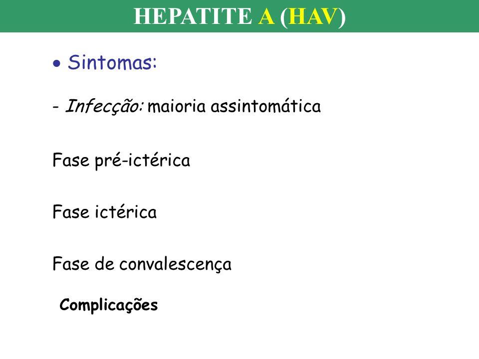 HEPATITE A (HAV) Sintomas: - Infecção: maioria assintomática