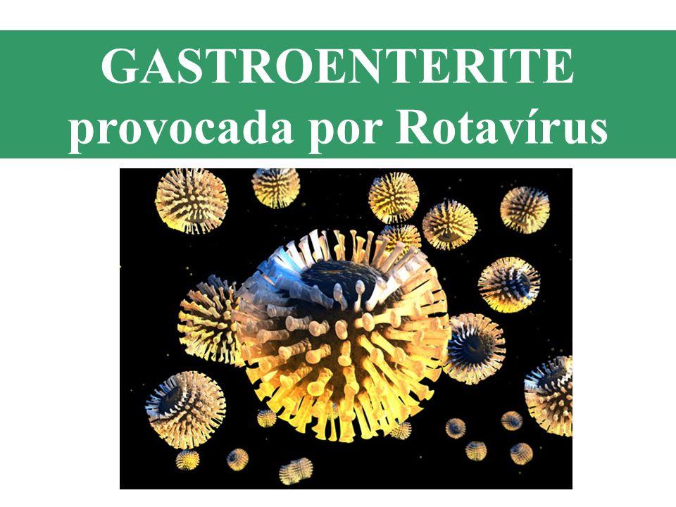 GASTROENTERITE provocada por Rotavírus