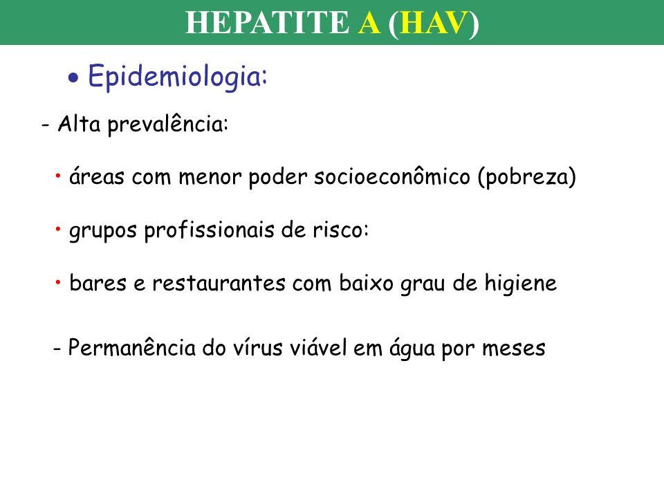 HEPATITE A (HAV) Epidemiologia: - Alta prevalência: