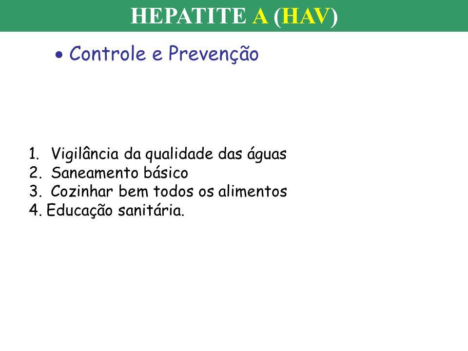 HEPATITE A (HAV) Controle e Prevenção