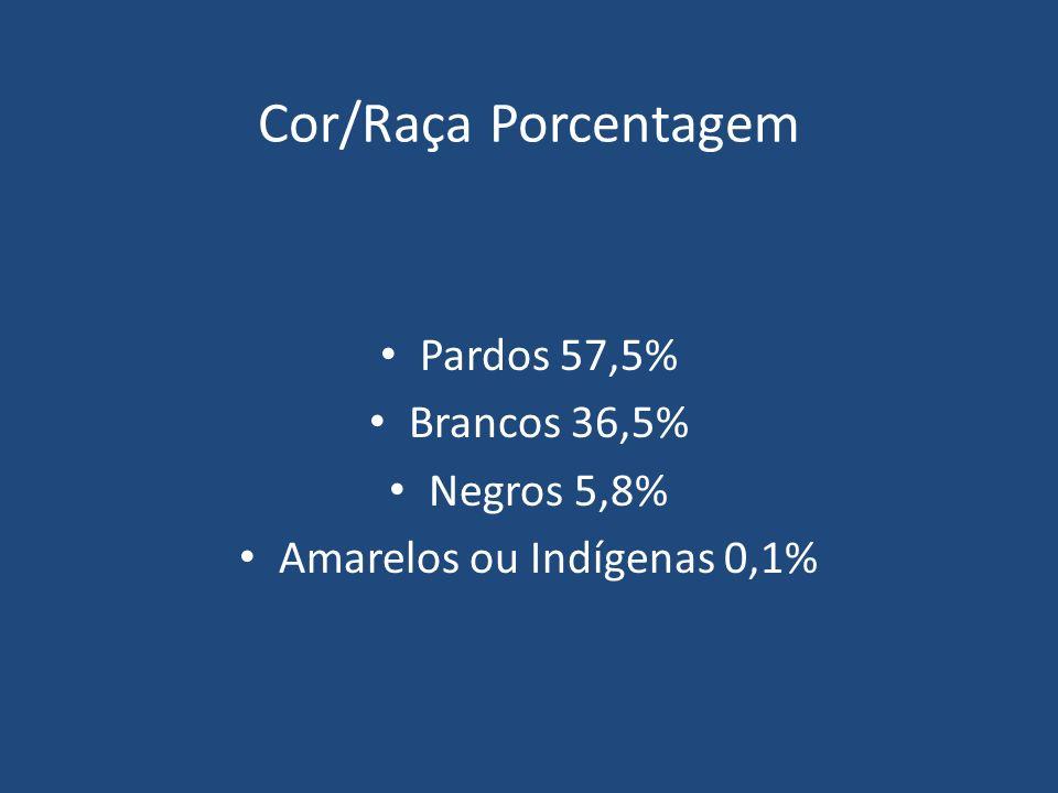 Amarelos ou Indígenas 0,1%