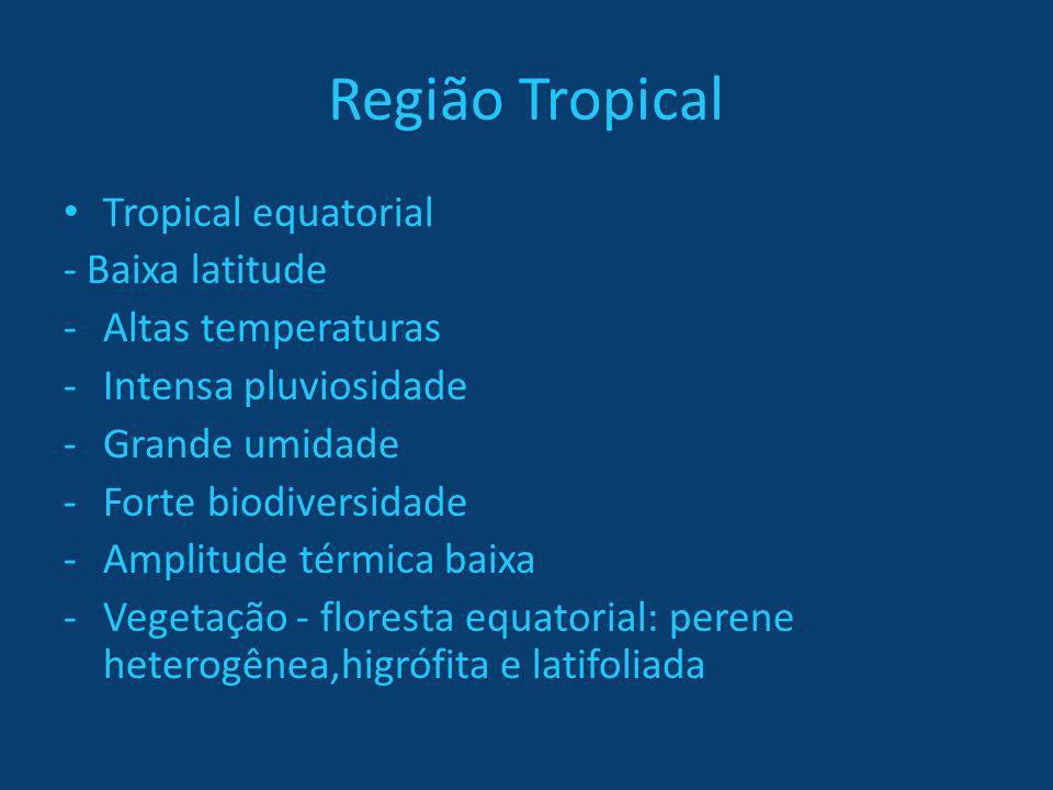 Região Tropical Tropical equatorial - Baixa latitude