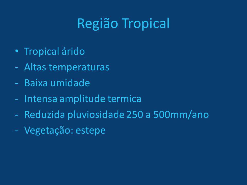 Região Tropical Tropical árido Altas temperaturas Baixa umidade