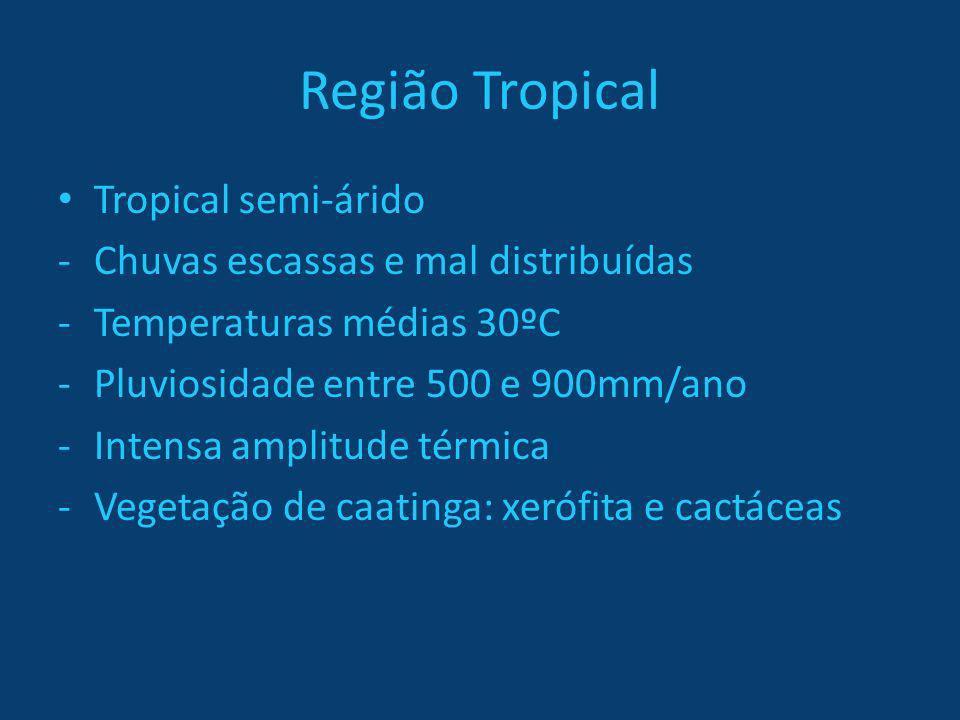 Região Tropical Tropical semi-árido Chuvas escassas e mal distribuídas