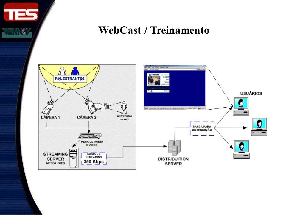 WebCast / Treinamento Esta seria a idéia de um WEBCAST ao Vivo.