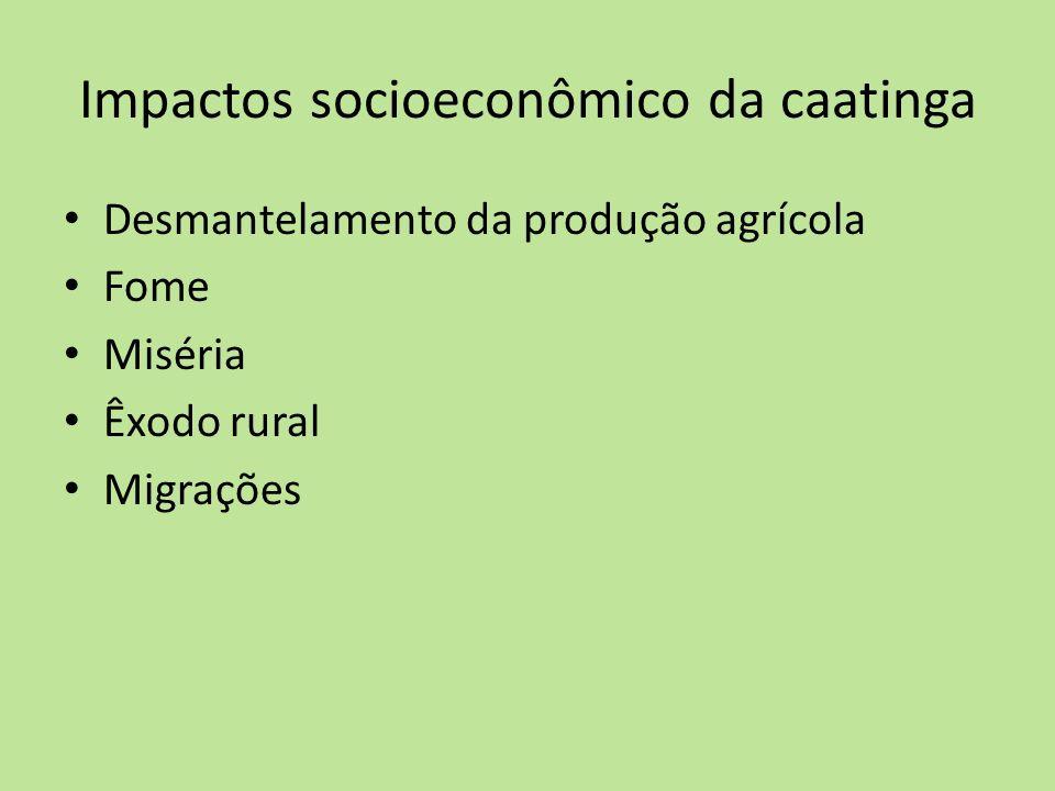 Impactos socioeconômico da caatinga