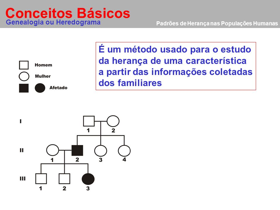 Conceitos Básicos É um método usado para o estudo