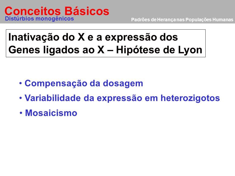 Conceitos Básicos Inativação do X e a expressão dos
