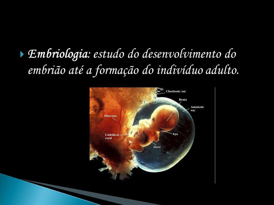 Embriologia: estudo do desenvolvimento do embrião até a formação do indivíduo adulto.