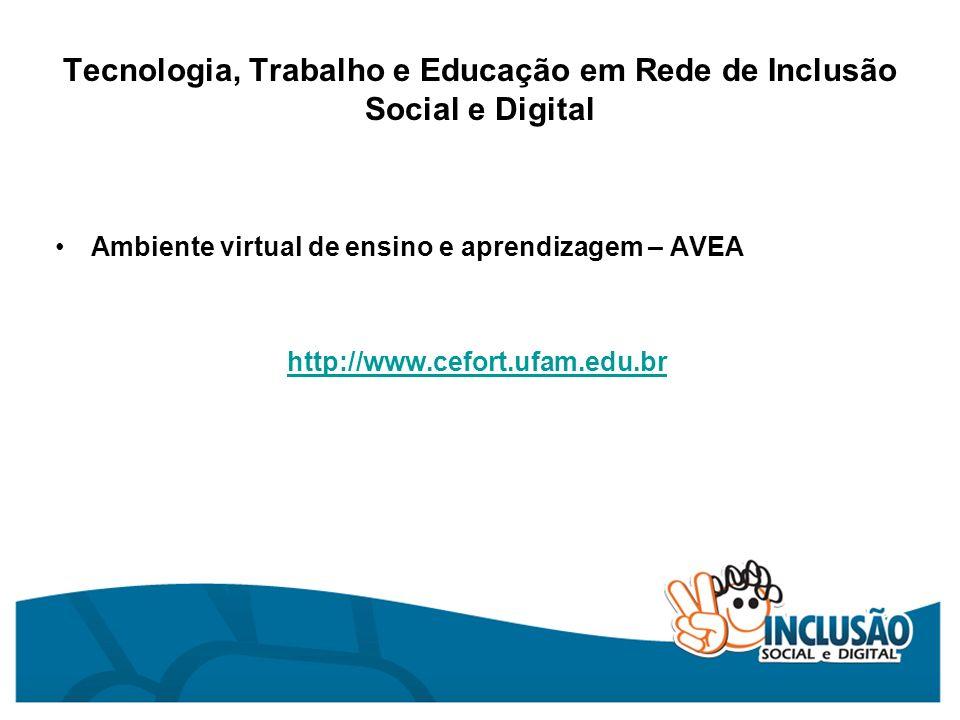 Tecnologia, Trabalho e Educação em Rede de Inclusão Social e Digital