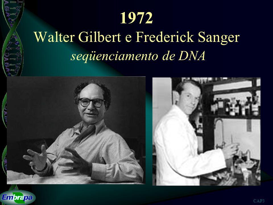 1972 Walter Gilbert e Frederick Sanger seqüenciamento de DNA