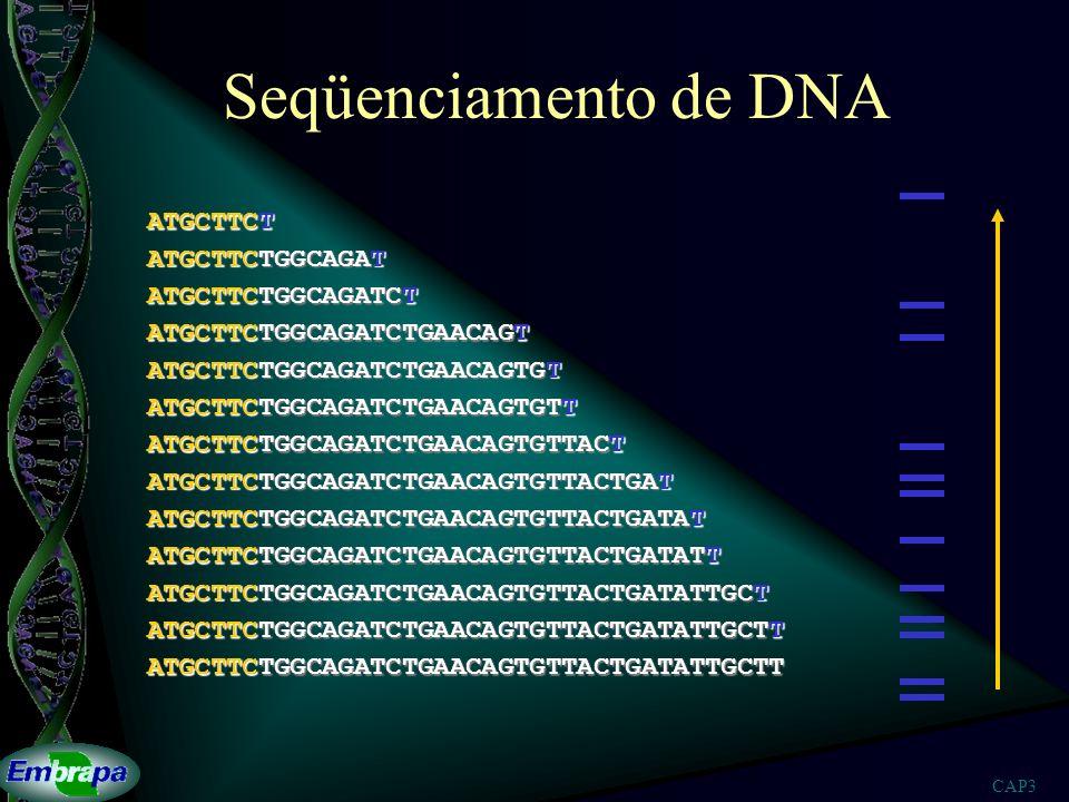 Seqüenciamento de DNA ATGCTTCT ATGCTTCTGGCAGAT ATGCTTCTGGCAGATCT