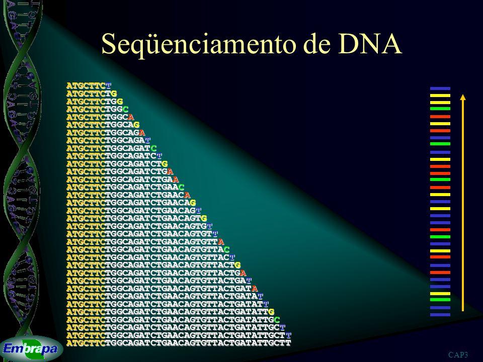Seqüenciamento de DNA ATGCTTCT ATGCTTCTG ATGCTTCTGG ATGCTTCTGGC
