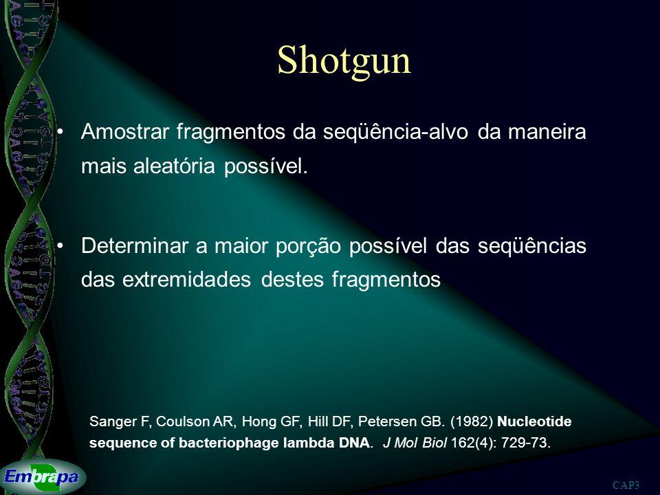 Shotgun Amostrar fragmentos da seqüência-alvo da maneira mais aleatória possível.