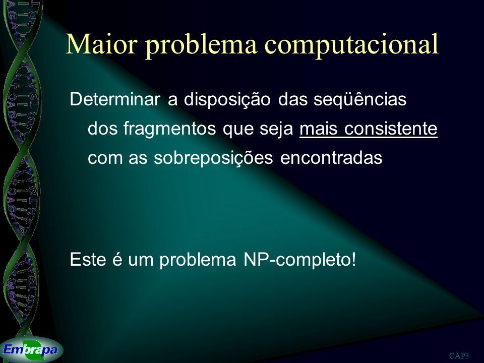 Maior problema computacional