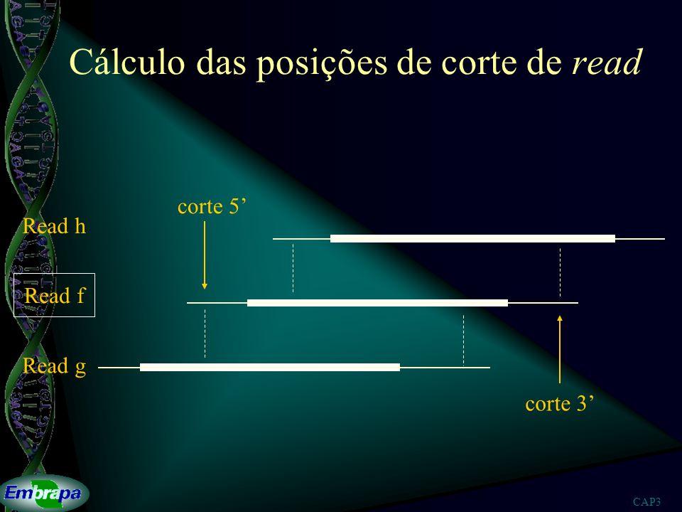 Cálculo das posições de corte de read