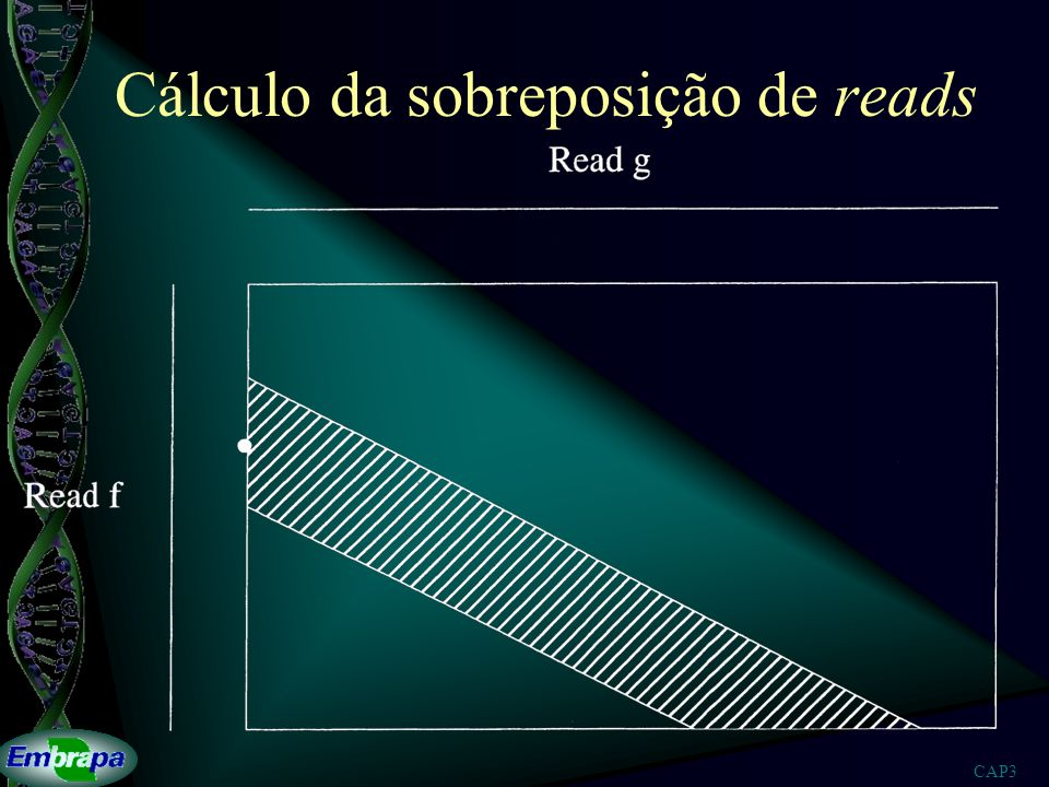 Cálculo da sobreposição de reads