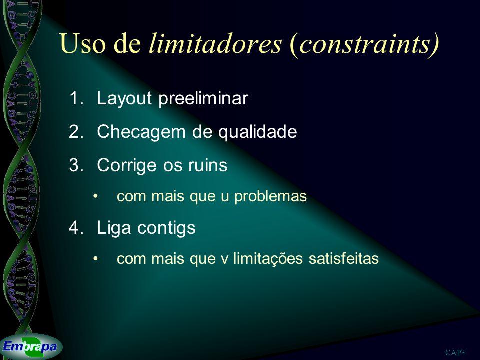 Uso de limitadores (constraints)