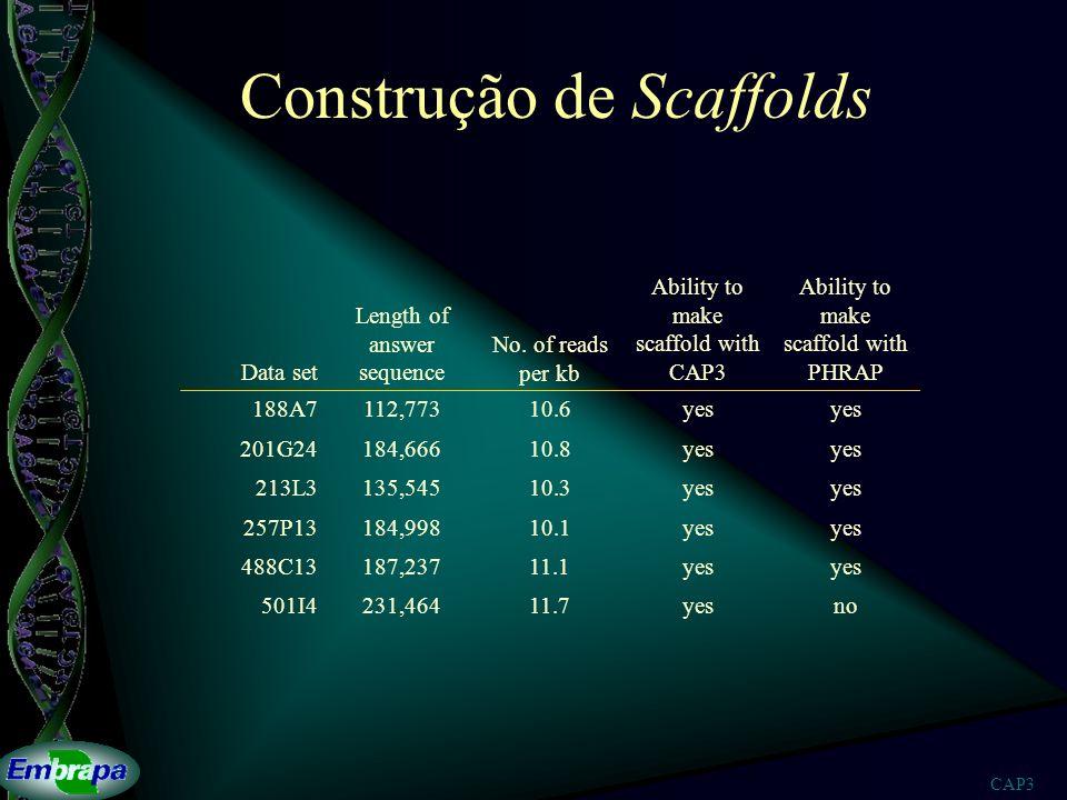 Construção de Scaffolds