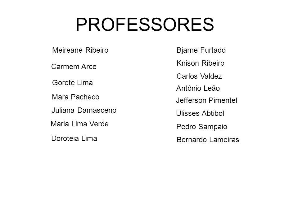 PROFESSORES Meireane Ribeiro Bjarne Furtado Knison Ribeiro Carmem Arce
