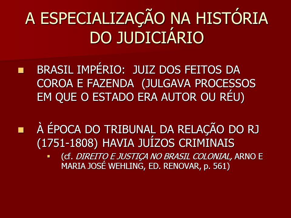 A ESPECIALIZAÇÃO NA HISTÓRIA DO JUDICIÁRIO