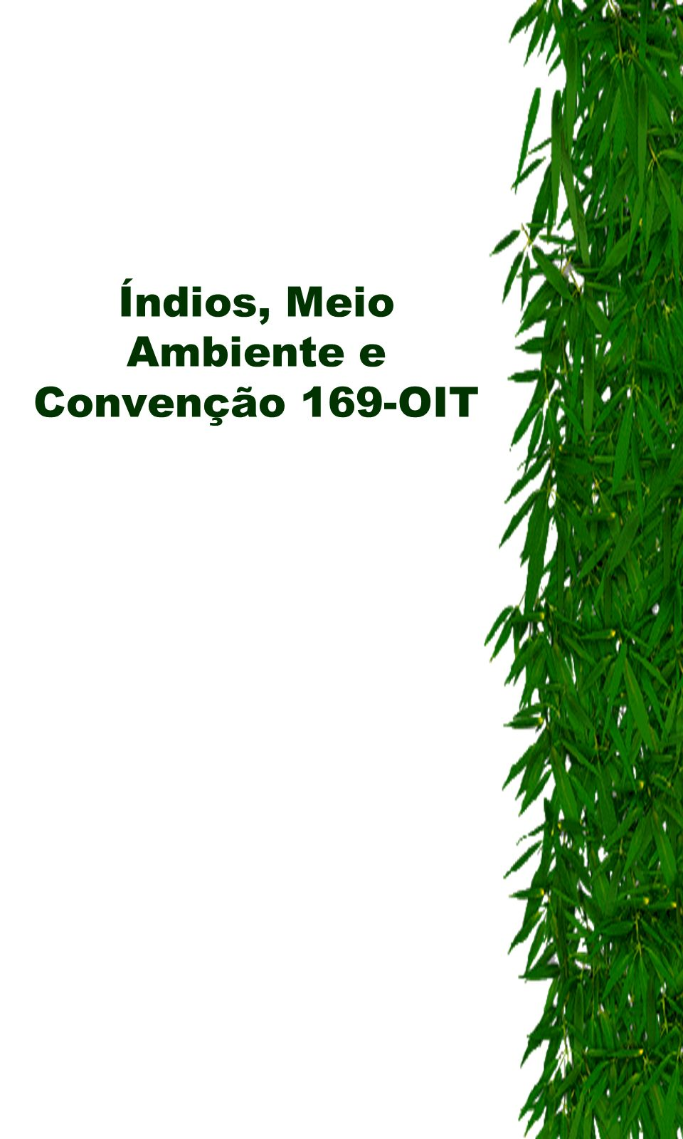 Índios, Meio Ambiente e Convenção 169-OIT