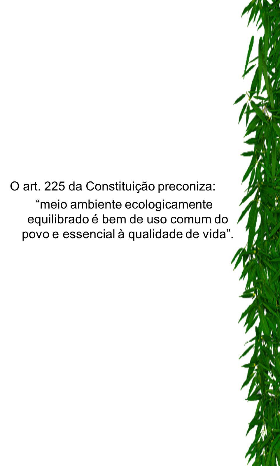O art. 225 da Constituição preconiza: