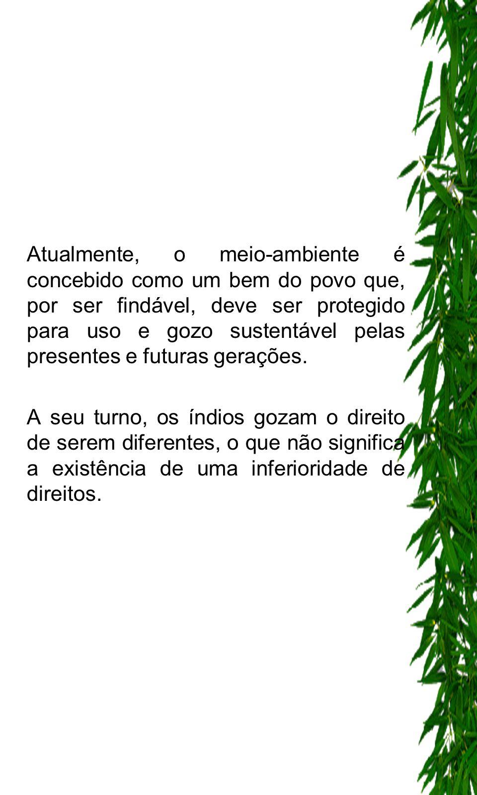 - Ao contrário,o direito à diferença explicita que aos indígenas não podem ser negados direitos deferidos aos cidadãos brasileiros, impondo seja a eles assegurado os diversos direitos decorrentes de sua peculiar situação.