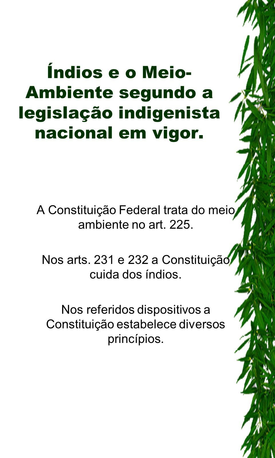 Índios e o Meio-Ambiente segundo a legislação indigenista nacional em vigor.