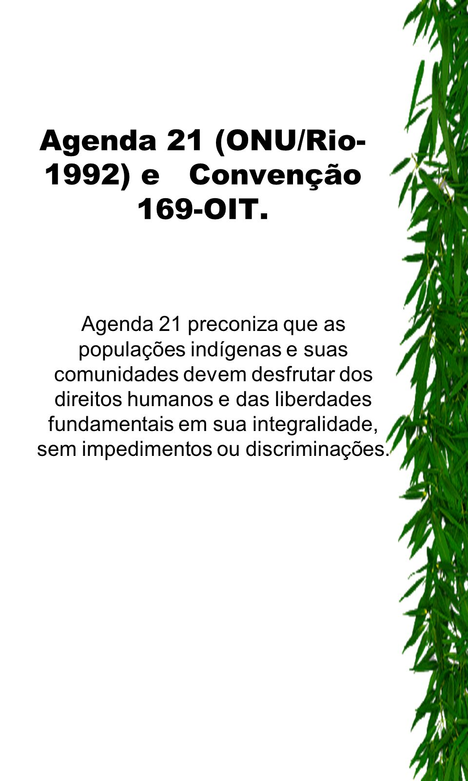 Agenda 21 (ONU/Rio-1992) e Convenção 169-OIT.