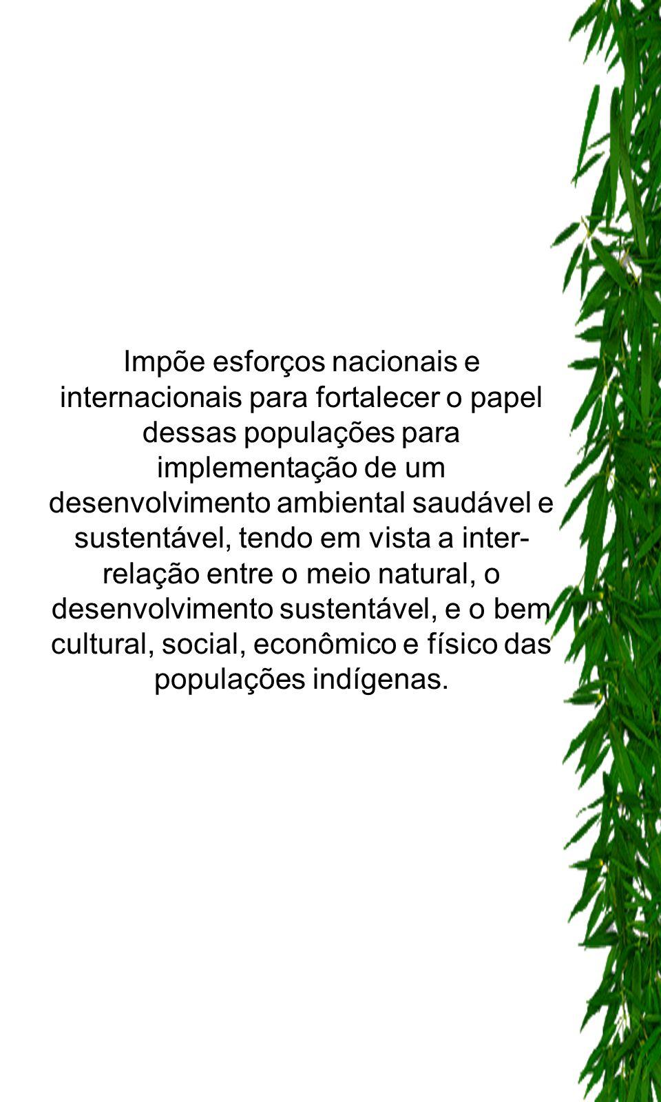 - Preconiza que as populações indígenas e suas comunidades devem desfrutar dos direitos humanos e das liberdades fundamentais em sua integralidade, sem impedimentos ou discriminações.