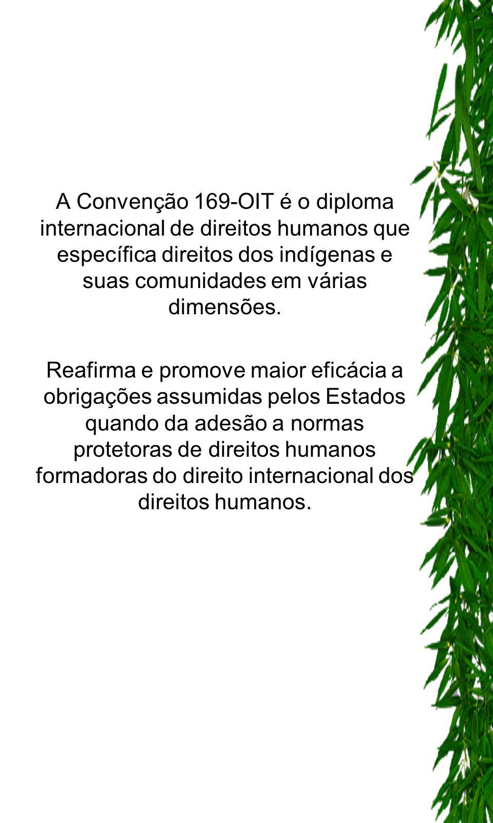 A Convenção 169-OIT é o diploma internacional de direitos humanos que específica direitos dos indígenas e suas comunidades em várias dimensões.