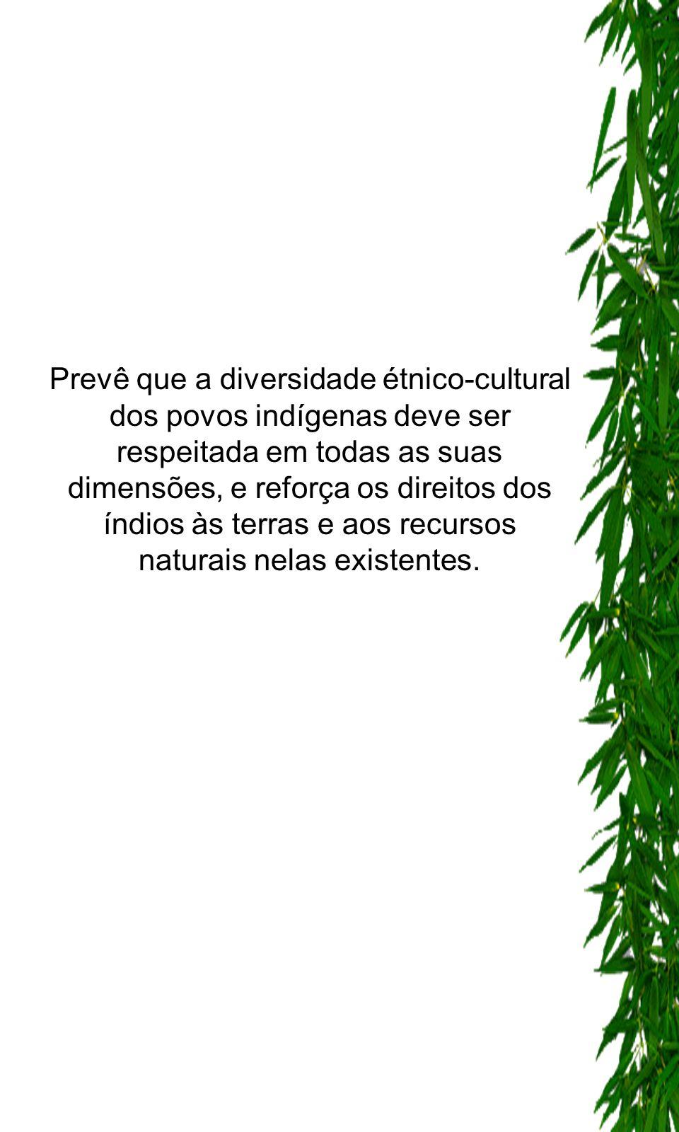 -Obriga os governos a adotarem medidas para proteger e preservar o meio ambiente dos territórios habitados por indígenas (art. 7º).