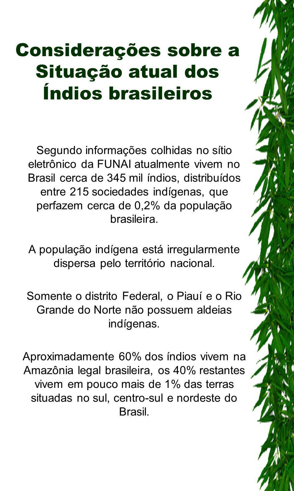 Considerações sobre a Situação atual dos Índios brasileiros