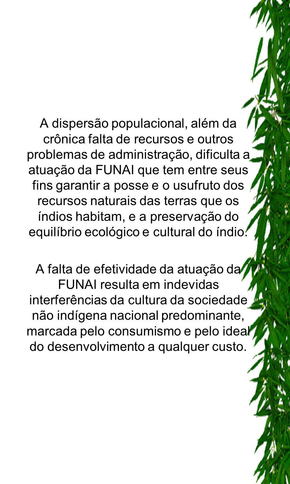 A dispersão populacional, além da crônica falta de recursos e outros problemas de administração, dificulta a atuação da FUNAI que tem entre seus fins garantir a posse e o usufruto dos recursos naturais das terras que os índios habitam, e a preservação do equilíbrio ecológico e cultural do índio.