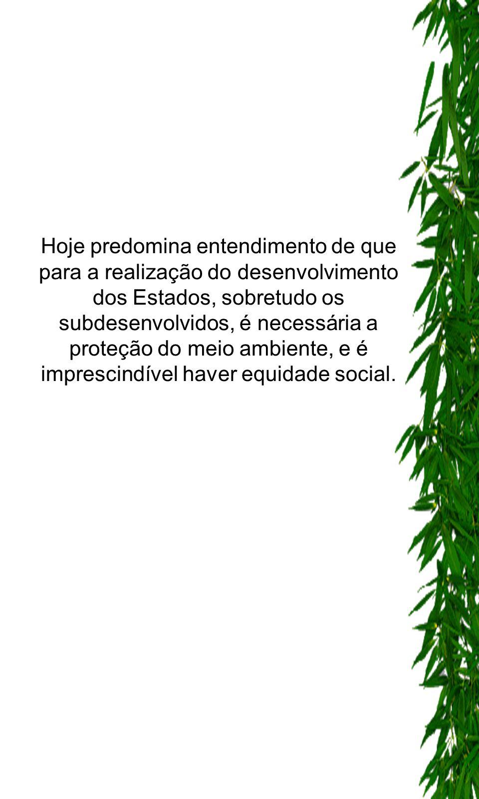 Hoje predomina entendimento de que para a realização do desenvolvimento dos Estados, sobretudo os subdesenvolvidos, é necessária a proteção do meio ambiente, e é imprescindível haver equidade social.