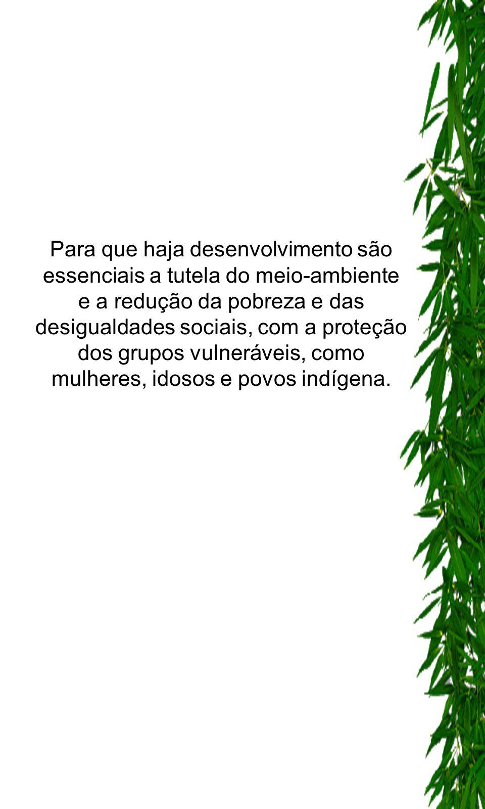 Para que haja desenvolvimento são essenciais a tutela do meio-ambiente e a redução da pobreza e das desigualdades sociais, com a proteção dos grupos vulneráveis, como mulheres, idosos e povos indígena.