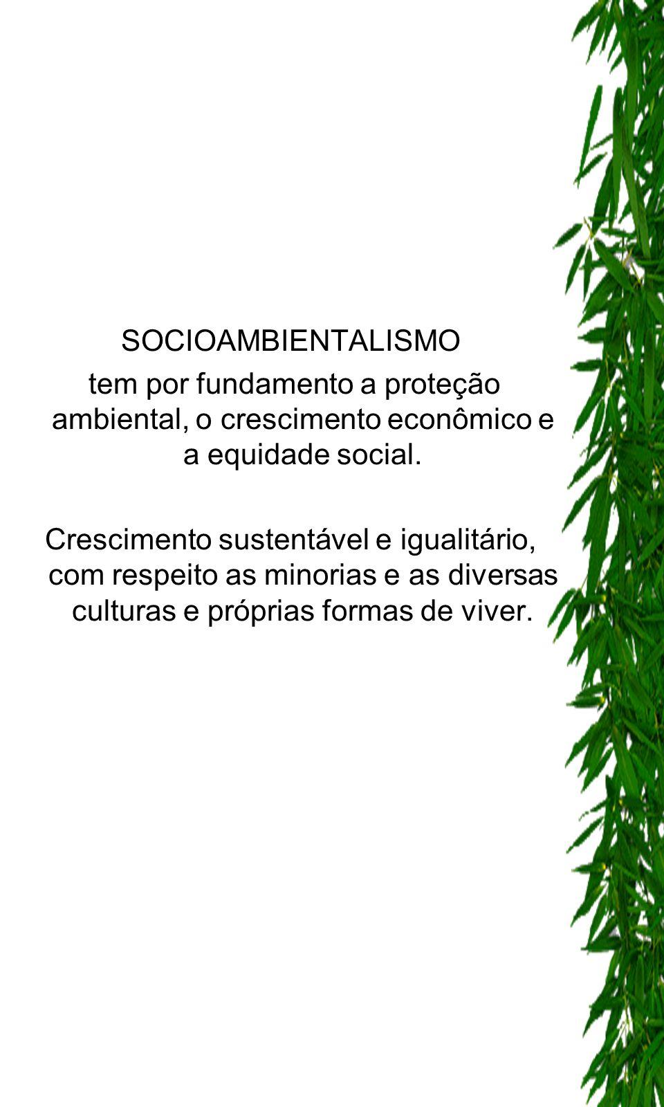 SOCIOAMBIENTALISMO tem por fundamento a proteção ambiental, o crescimento econômico e a equidade social.
