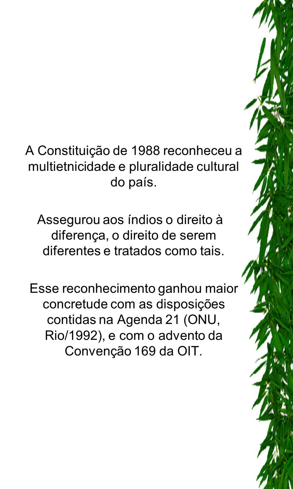 A Constituição de 1988 reconheceu a multietnicidade e pluralidade cultural do país.