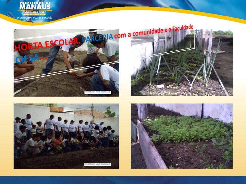 HORTA ESCOLAR, PARCERIA com a comunidade e a Faculdade CIESA...